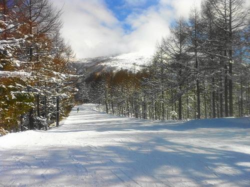 スノボー 峰の原高原スキー場