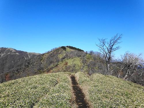 【丹沢】塔ノ岳~丹沢山(大倉尾根) 日帰り登山