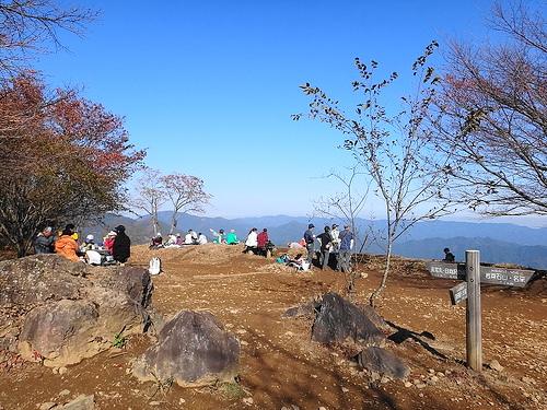 棒ノ折山(奥多摩・奥武蔵) 電車・バスで行く日帰り紅葉登山