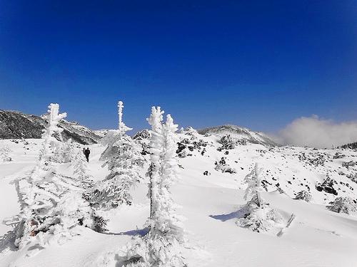 冬の北横岳~縞枯山(北八ヶ岳) 山小屋泊雪山登山