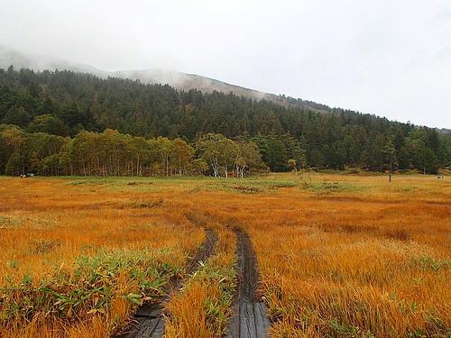 至仏山(尾瀬) 夜行バスで行く日帰り登山 草紅葉を愛でる山旅