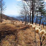 鷹ノ巣山(奥多摩)  紅葉と稜線と温泉とビール登山