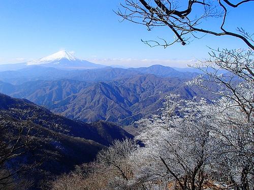 檜洞丸~蛭ヶ岳~丹沢山~塔ノ岳 冬の丹沢主脈日帰り登山