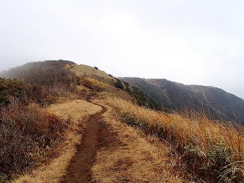 明神ヶ岳~明星ヶ岳(箱根) 冬のクリスマス登山