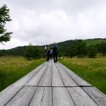 水ノ塔山・篭ノ登山・池の平湿原 ~~登山と高山植物観賞~~