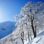 伯耆大山(鳥取) 冬山登山 ~~雲海に聳える中国地方最高峰~~