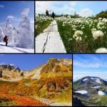 【2015年総集編】 雪山~夏山~紅葉 1年間の登山記録まとめ