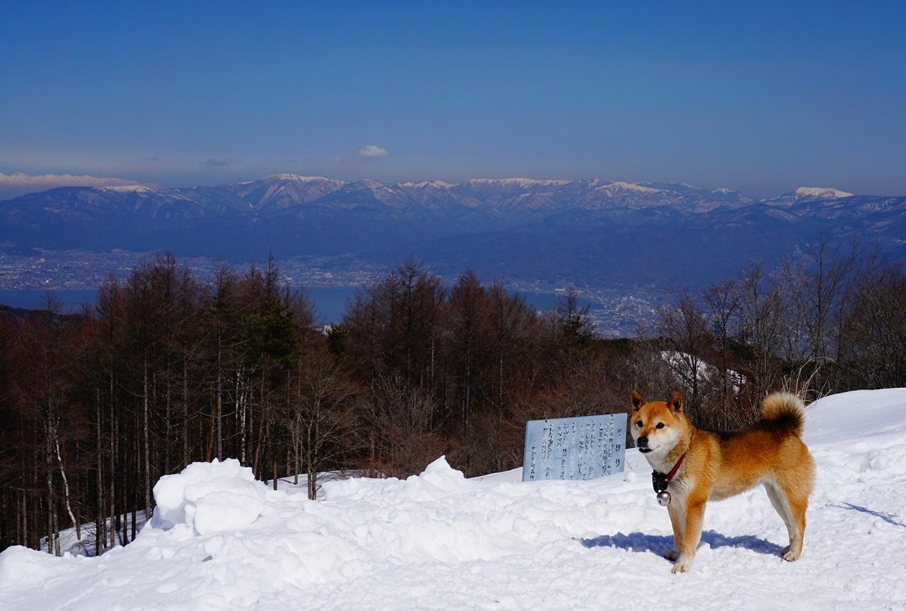 守屋山 雪山ハイキング 八ヶ岳にほど近い南アルプス最北端の展望の山