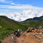 【北八ヶ岳】天狗岳 日帰り登山 苔むす森と八ヶ岳~アルプスの大展望
