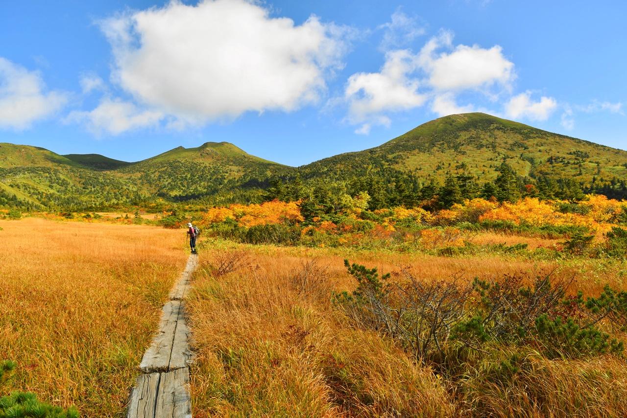 八甲田山 広大な湿原歩きと紅葉登山 (酸ヶ湯温泉ルート)