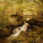 滝川渓谷 紅葉トレッキング 東北最南端の秘境へ