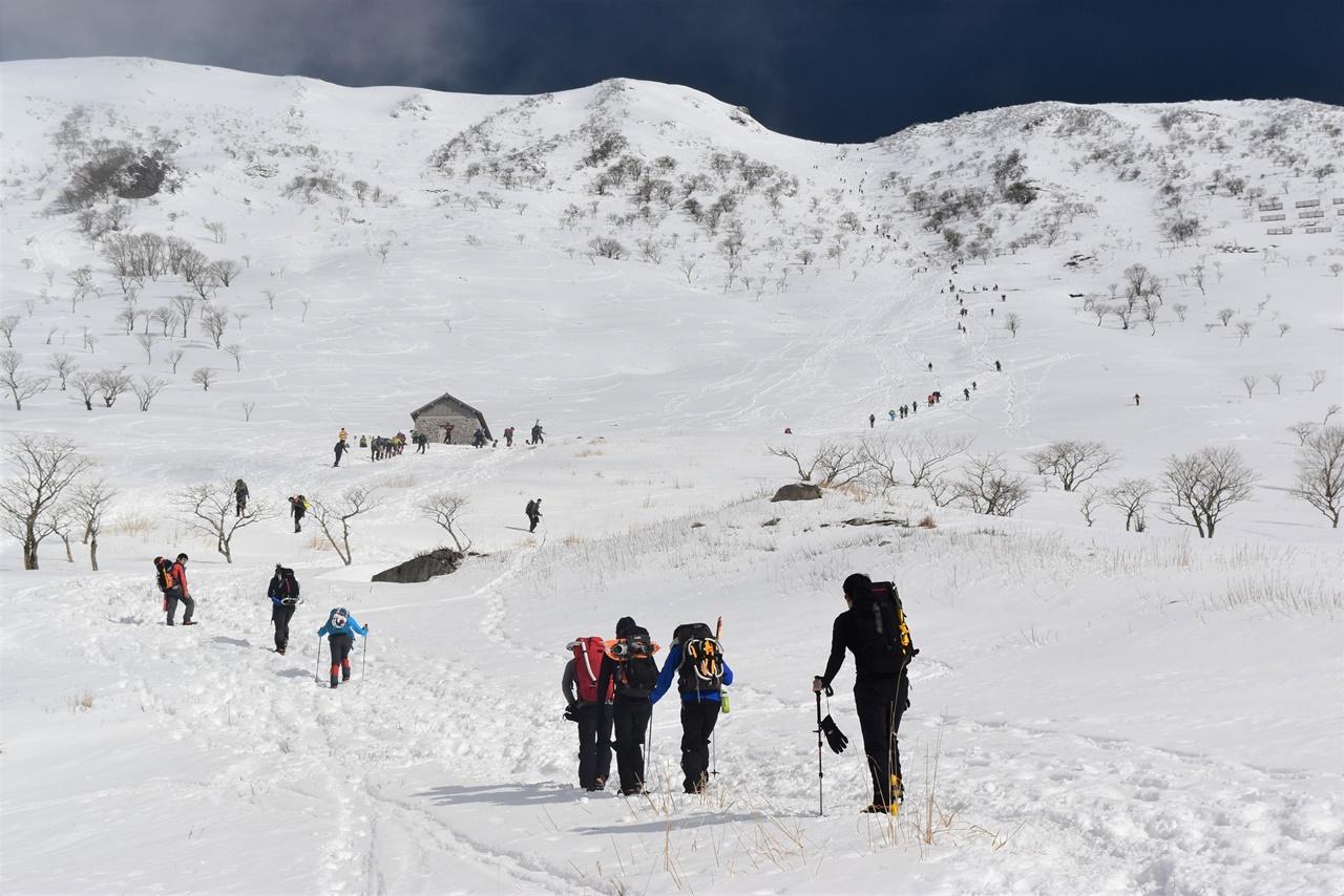 冬の伊吹山 雪山登山 電車とバスで行く滋賀県最高峰