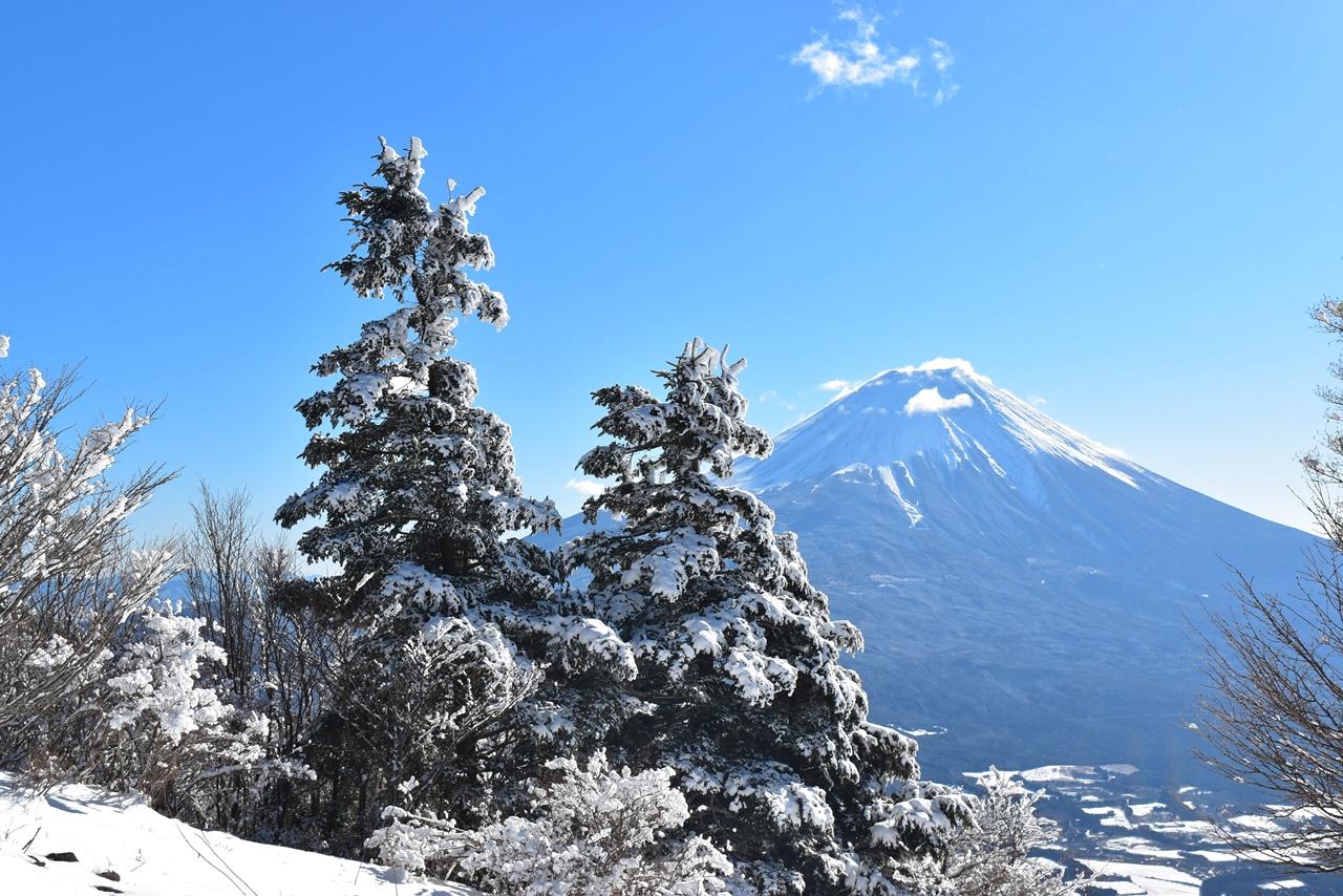 毛無山~雨ヶ岳 冬の雪山登山 樹氷と富士山の大展望