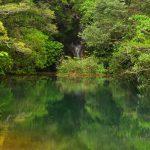 【伊豆諸島・八丈島】三原山登山と秘境感漂う神秘の硫黄沼・唐滝