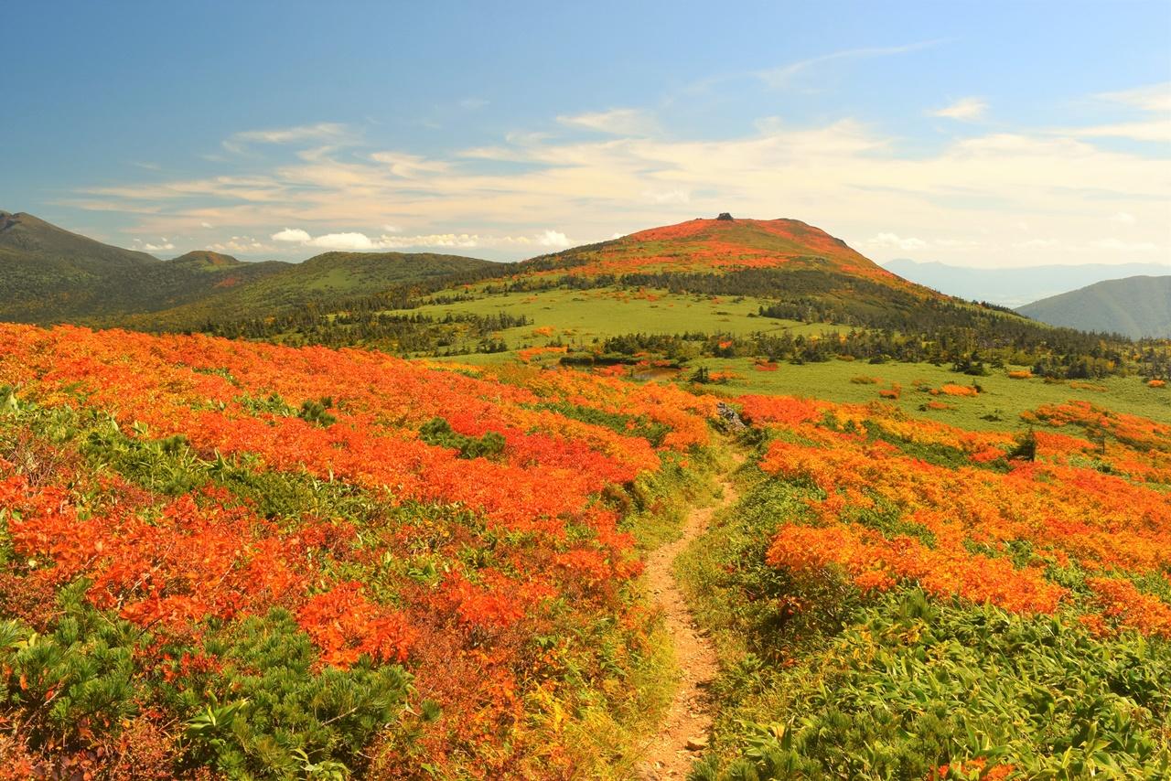 【東北】三ツ石山 圧巻の紅葉風景・バスで行く裏岩手縦走日帰り登山