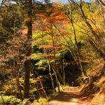 【奥多摩】御岳渓谷~御岳山~大岳山 電車で行く紅葉登山
