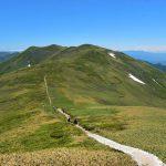 【谷川連峰】平標山~仙ノ倉山 バスで行く日帰り登山 雄大な稜線に咲くハクサンイチゲの大群生