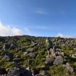 【北八ヶ岳】蓼科山~双子山 大河原峠から日帰り周回登山と池めぐり