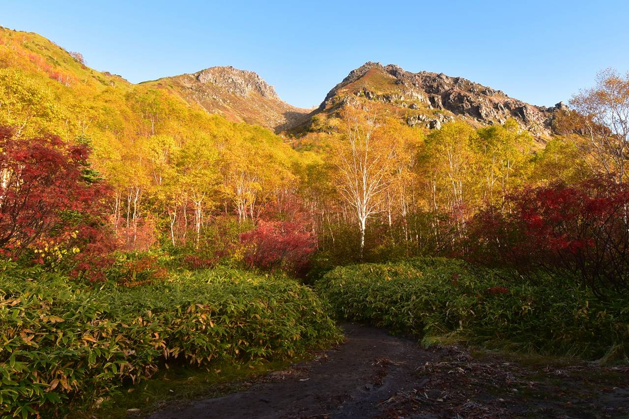 【北アルプス】焼岳・新中の湯ルート 圧巻の紅葉風景 秋の日帰り登山