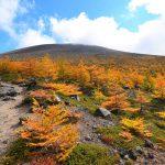 【浅間山】前掛山~Jバンド~黒斑山周回 紅葉の絶景!秋の日帰り登山