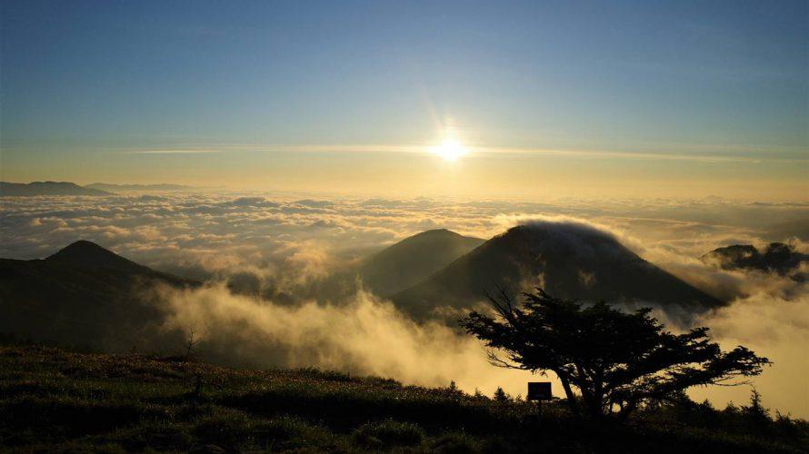 湯ノ丸山~池の平湿原 雲海とレンゲツツジの絶景登山