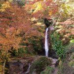【秩父】破風山~華厳の滝 紅葉と冬桜を楽しむ絶景登山