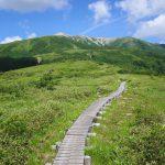 【北アルプス】折立~薬師岳 太郎平小屋泊 夏の縦走登山