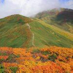 【東北】月山 紅葉登山 真っ赤な稜線と黄金の湿原へ