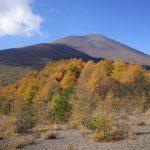 【登山】小浅間山 紅葉と浅間山の大展望!気軽に登れる火山ハイキング
