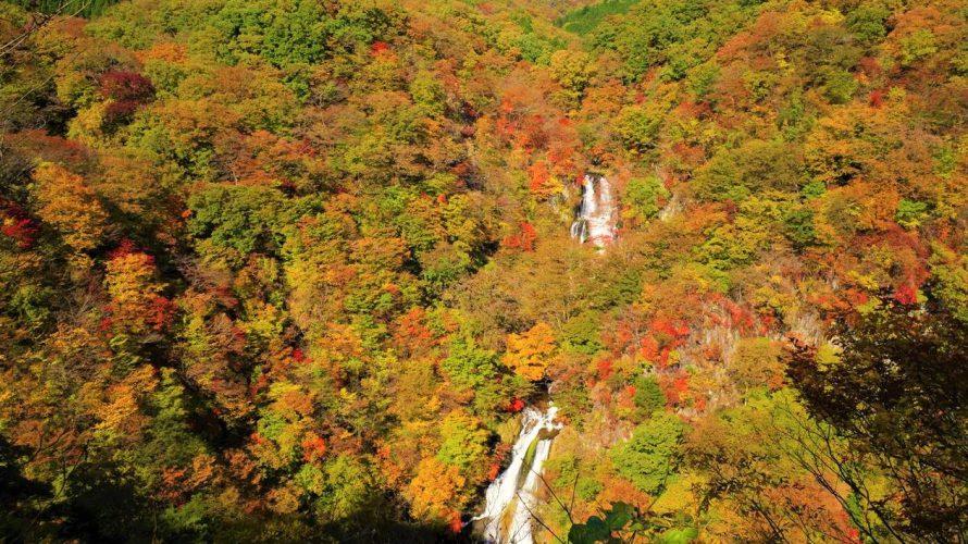 【日光】霧降の滝~大山 紅葉登山(隠れ三滝ルート)